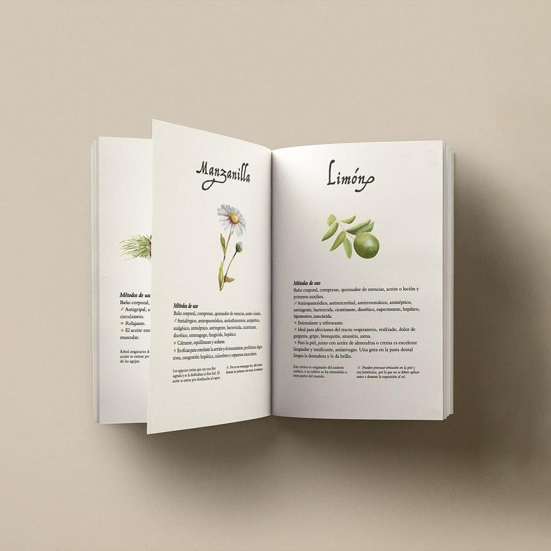 aromas4